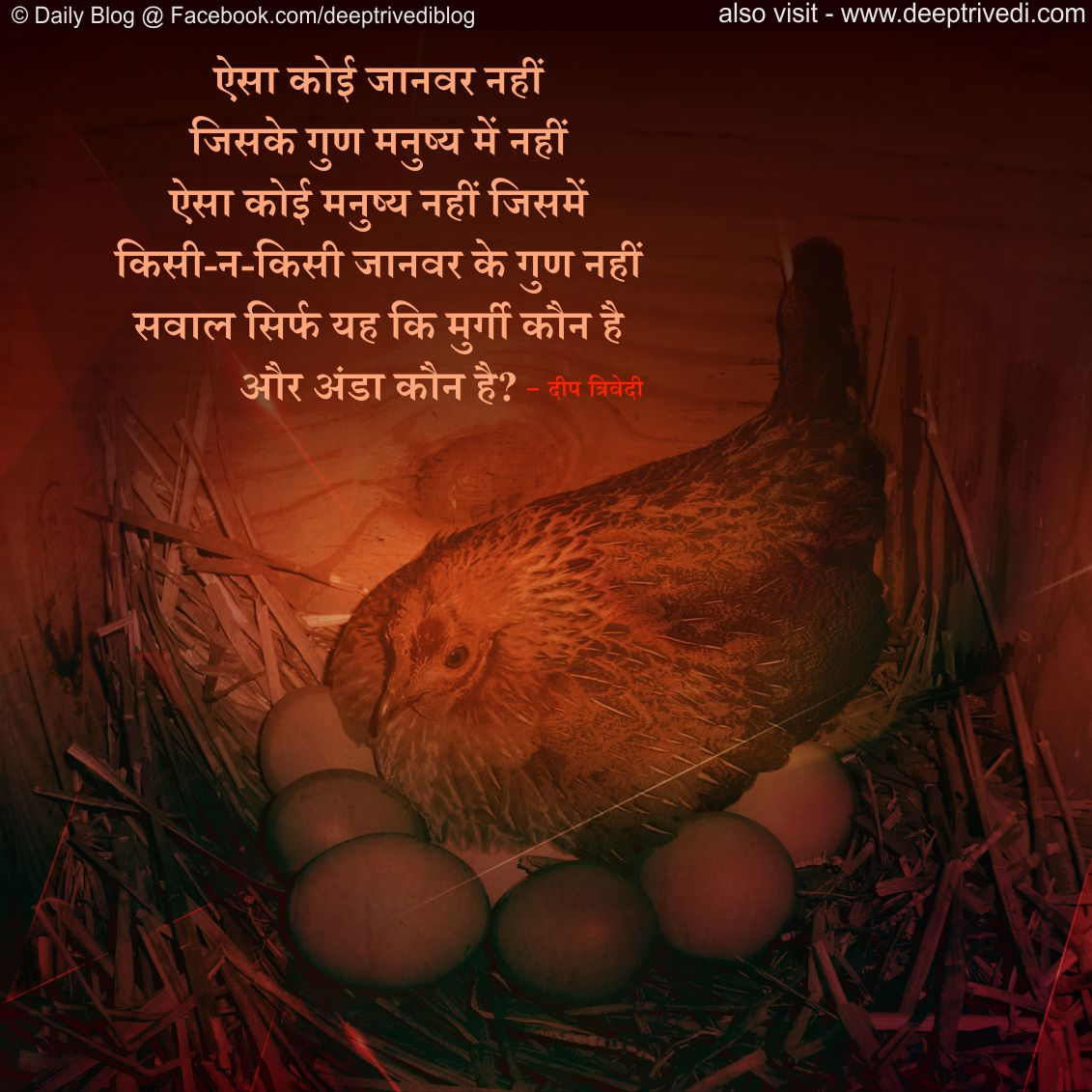 B 381 Hindi