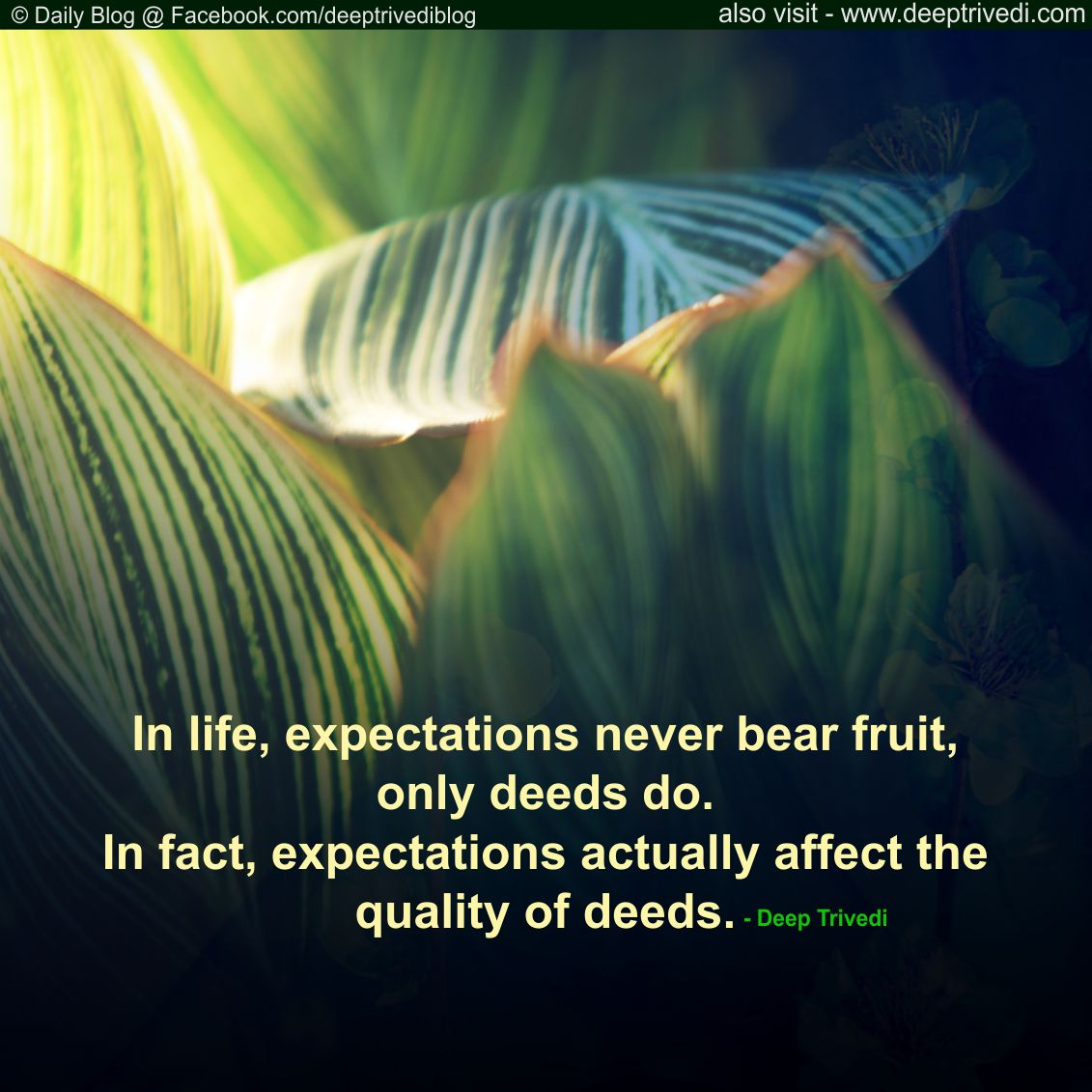 expectations never bear fruit, only deeds do